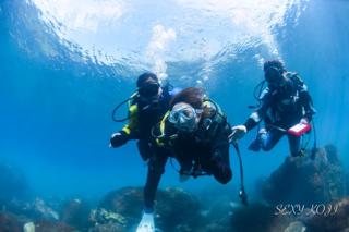 海中体験.png